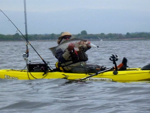 Malibu x factor 13 fishing kayak review for Fishing kayak with livewell